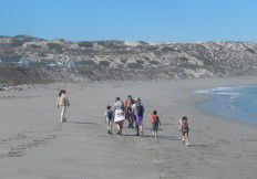 the 5 Bay Trail with a group of children